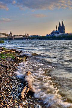 Stadsportret van Keulen aan de Rijn met de natuur en golven op de voorgrond van 77pixels