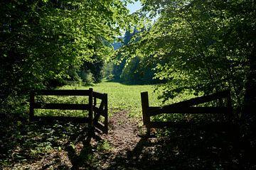 das Tor zur Welt von Heiko Kueverling