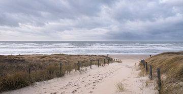 zum Strand von Arjan van Duijvenboden