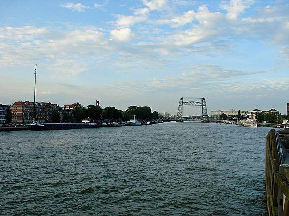 Water Rotterdam