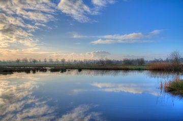 reflectie in de morgen van Lia Altink
