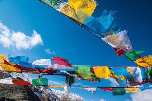 Wapperende gebedsvlaggen op de Tibetaanse hoogvlakte