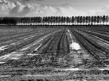 Terres labourées sur Jim van Iterson