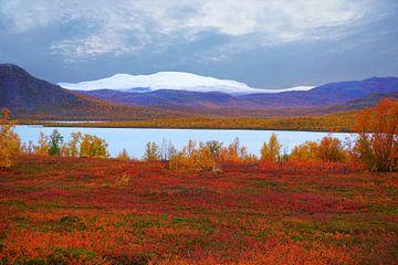 In het hoge noorden - Zweeds Lapland van Thomas Zacharias