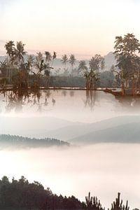 Mysterieus landschap in de nevel, Java van Inge Hogenbijl