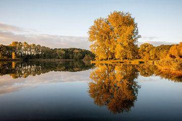 Herfst kleurtjes von Peter Korevaar