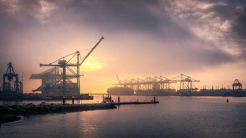 APM II Container Terminal van