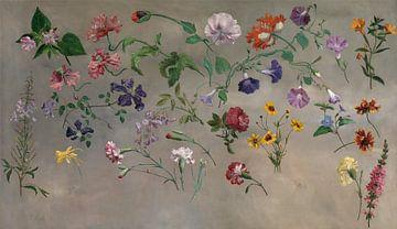 Jacques-Laurent Agasse~Studien von Blumen