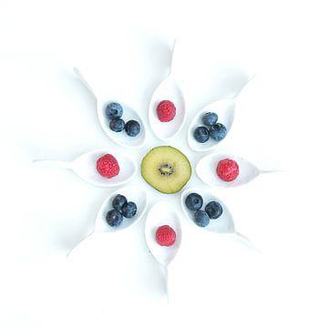 fruit rond III sur Klaartje Majoor