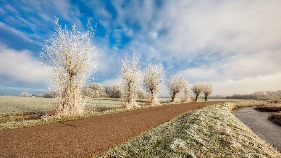 Hollands winterlandschap II van eric van der eijk