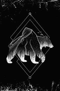 Bär Braunbär Grizzlybär Wald von Felix Brönnimann