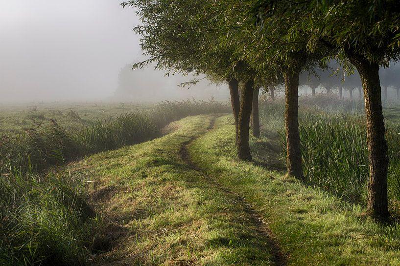 September Morning van Astrid Volten