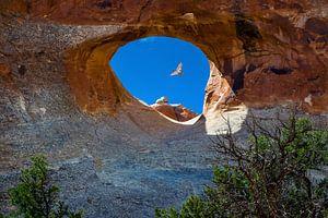 Doorkijkje in Arches National Park, Utah