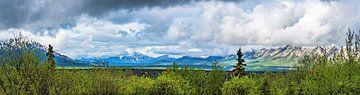 Panorama von Bergspitzen im Yukon, Kanada von Rietje Bulthuis