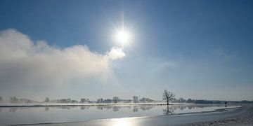 Vom Fluss IJssel aufsteigender Nebel während eines kalten Winters von Sjoerd van der Wal