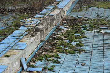 Verlassenes Schwimmbad in Deutschland von ilja van rijswijk