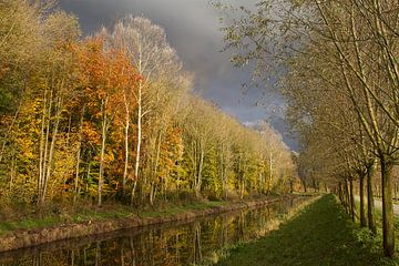 Herfst Biesbosch von Ronald Dijksma