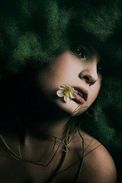 daisy van Pamsfotografie Pamela Bakhuizen