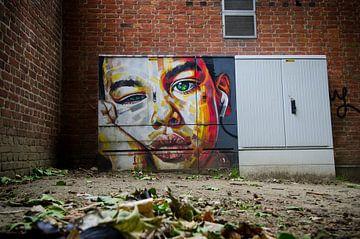 Kunst auf der Straße von Mark Bolijn
