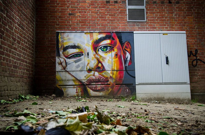 Kunst op straat van Mark Bolijn