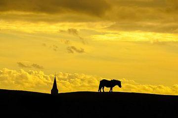 Pony auf einem Deich / Pony auf einem Deich von Henk de Boer