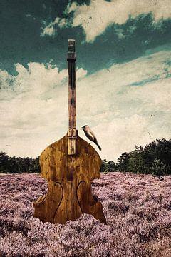 Muziek op de heide van Nannie van der Wal