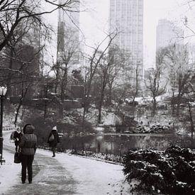 Sneeuwval in Central Park, New York (analoog) zwart wit van Lisa Berkhuysen