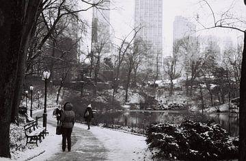 Sneeuwval in Central Park, New York (analoog) zwart wit von Lisa Berkhuysen
