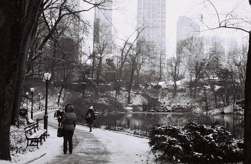 Sneeuwval in Central Park, New York (analoog) zwart wit van
