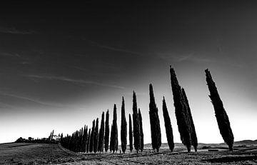 Poggio Covili van Fotografie door Menno