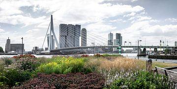 Wereldstad Rotterdam aan de maas in de zomer von Chez Michel