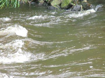 Golvende rivier van Letty van Dijk