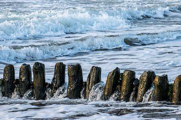 Palenrij in zee van Arina Keijzer