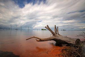 Insel Matu von Anand Rambaran