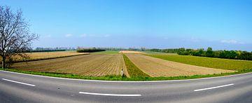 Landstraße und Felder von Leopold Brix