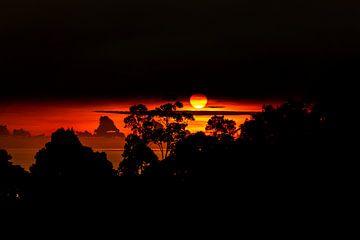 Sonnenuntergang Borneo von Jan Tuns