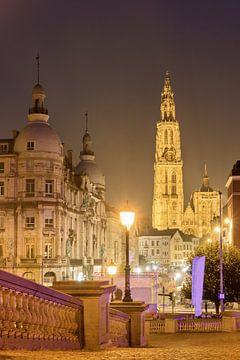 Antwerpen kathedraal in de avond van Dennis van de Water