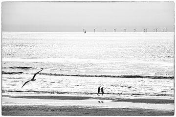 Noordzeestrand en Zeezicht