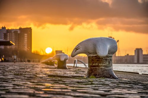 Sonnenuntergang Wilhelminapier von Frans Blok