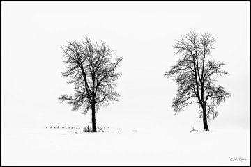 Sneeuwstorm van Wim Mourits