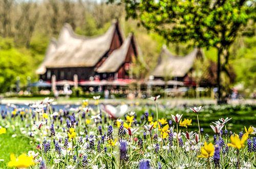 Voorjaar bij de Kralingse Plas van