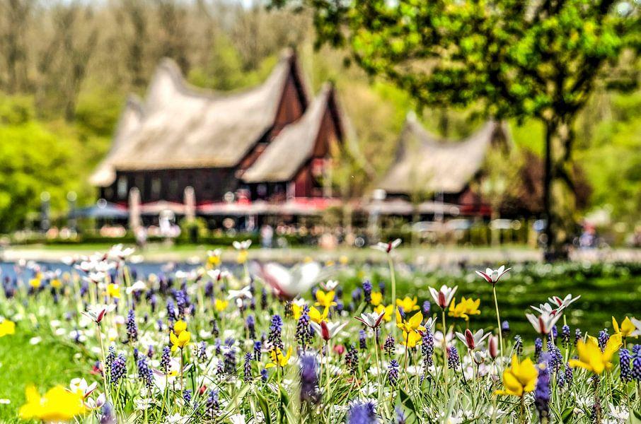 Voorjaar bij de Kralingse Plas van Frans Blok