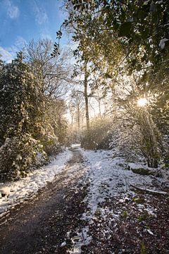 Winters landschap in de Voerstreek te Belgisch Limburg van Shottrotter