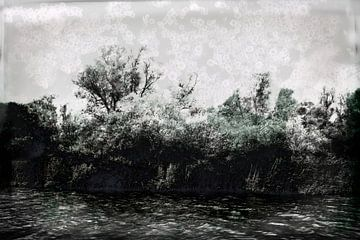 Nationaal Park De Biesbosch, de oever #02 van Peter Baak