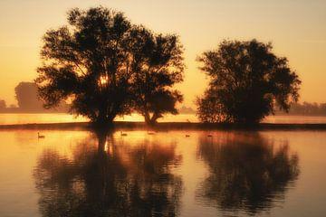 Zonsopkomst met bomen en water van Moetwil en van Dijk - Fotografie