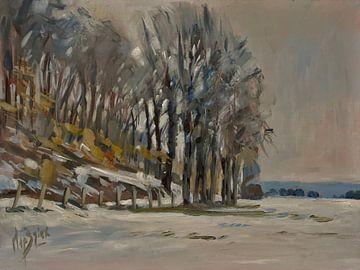 Winter im Oberwald von Nop Briex