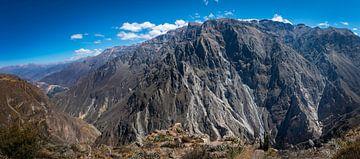Indrukwekkend panorama van de Colca Canyon, Peru van Rietje Bulthuis