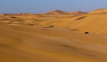 Duinen in de Namib woestijn, Namibië van Christel Nouwens- Lambers