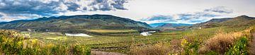 Panorama landschap met Fraser river in Brits Columbia, Canada van Rietje Bulthuis