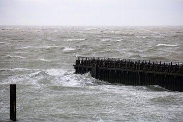 Storm aan zee van